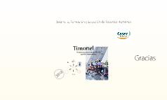 Timonel Colaboradores