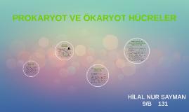 Copy of PROKAYOT VE ÖKARYOT HÜCRELER