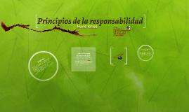 Principios de la responsabilidad
