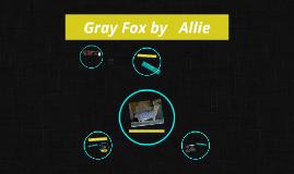 Gray fox by Allie