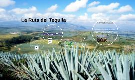 Copy of La Ruta del Tequila