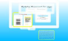 Wolfram Japan Project / Marketing Management