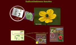 2017. Eudicotiledóneas basales (T25:I) para Biotecnología