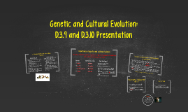 Genetic and Cultural Evolution: