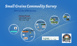 2019 Small Grains Commodity Survey