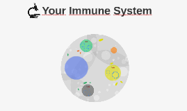 Your Immune System