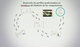 Desarrollo de perfiles profesionales en terminos del dominio