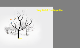 Study Habits & Exam Preparation