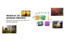 RIESGOS EN  LOS INCENDIOS FORESTALES