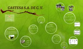 CASTESA S.A. DE C. V.