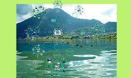 EDS :Contaminacion Ambiental