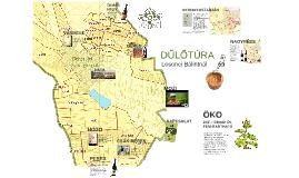 Copy of Losonci DŰLŐTÚRA