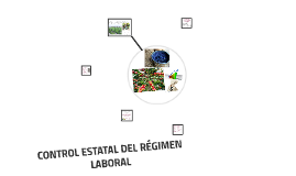 CONTROL ESTATAL DEL RÉGIMEN LABORAL