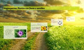 Angiosperma: Plantas con flores y semillas