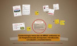 Epidemiología molecular de MRSA ambiental en un Hospital Esc