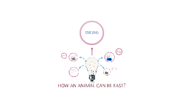 HOW ANIMAL CAN BE FAST?