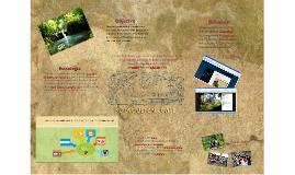 Redes sociales y turismo alternativo
