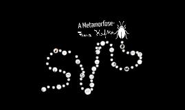 Copy of A Metamorfose - Franz Kafka