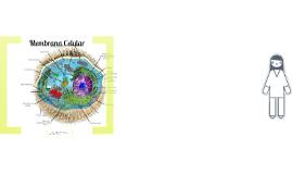Membrana celular y transporte celular