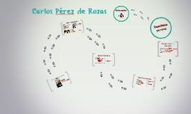 Carlos Pérez de Rozas i Arribas