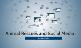 Animal Rescues and Social Media