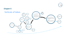 Copy of Verticals of Adam