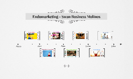 Endomarketing - Swan Business Molinos