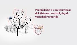 Propiedades y Características del Sistema:  control y ley de