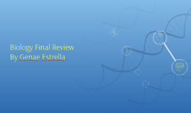 Biology Final Review