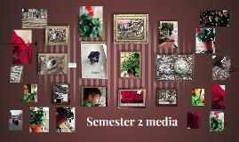 Semester 2 media