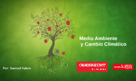 Copy of Medio Ambiente