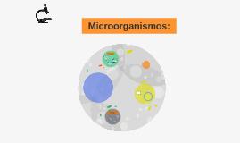Microorganismos beneficiosos: