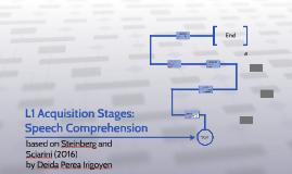 L1 Acquisition Stages