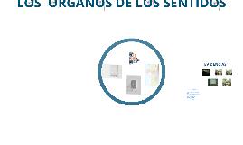 LOS ORGANOS DE LOS SENTIDOS
