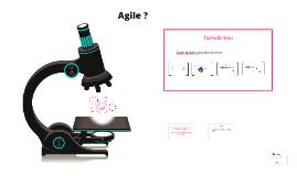 Copy of Agile ?