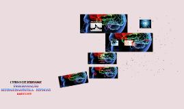 Copy of PROGRAMAÇÃO NEUROLINGUÍSTICA - HIPNOSE