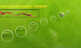 SAVE OUR WETLANDS! - SHAKARI