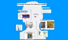 Copy of Drenaje venoso de cabeza y cuello
