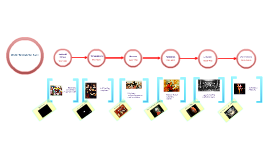 Copy of Music Through The Ages