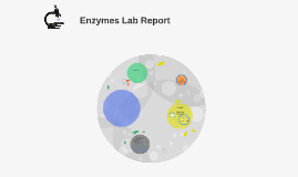 Enzymes Lab Report