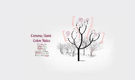Copy of Comma and Semi-colon Prezi