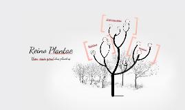 Reino Plantae - Uma visão geral das plantas