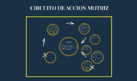 CIRCUITO DE ACCION MOTRIZ