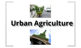 Copy of Urban Farming