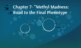 """Chapter 7- """"Methyl Madness: Road to the Final Phenotype"""