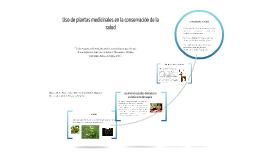 Uso de plantas medicinales en la conservación de la salud