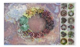 Linda Estrin :: Succulent Floral Arts