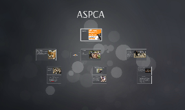 Copy of ASPCA