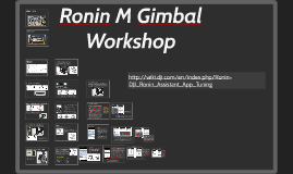 Ronin M Gimbal