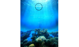 Sea Animal Behavior